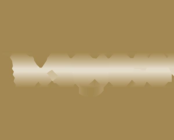 Vault Salon logo
